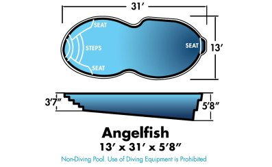 """Angelfish 13' x 31' x 5'8"""""""