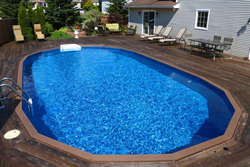 oval shaped pool