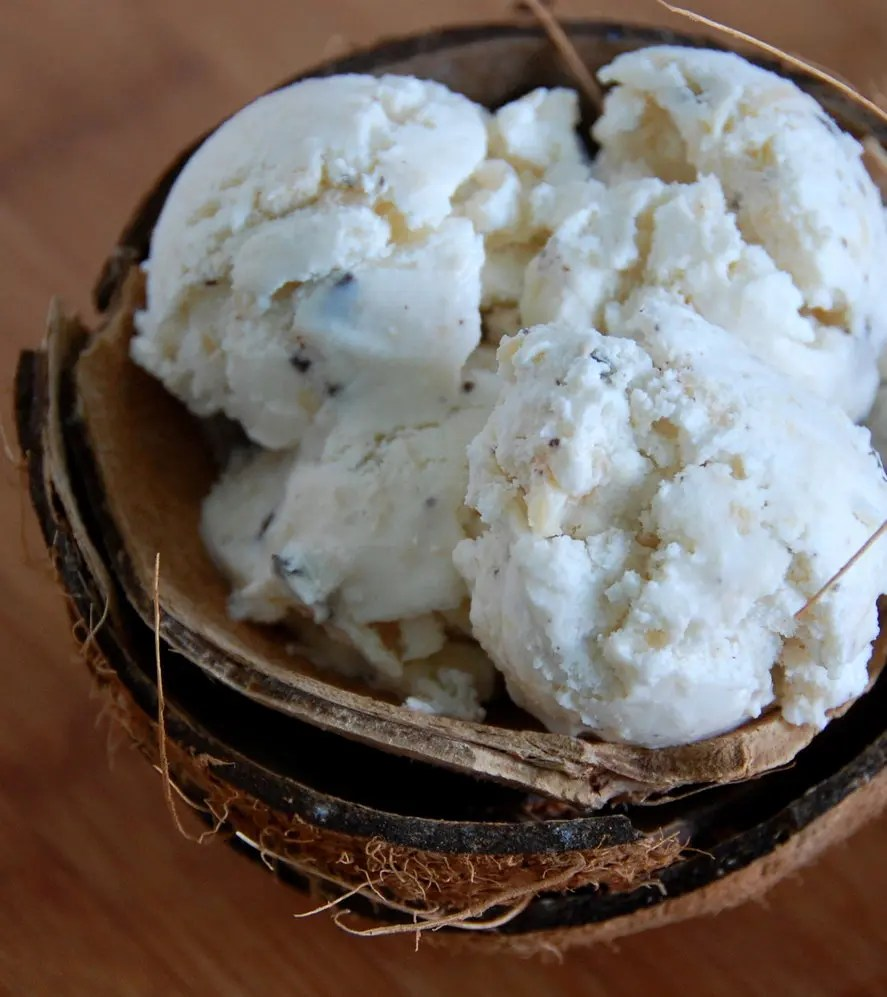 Easy Coconut And Chocolate Chip Ice Cream Recipe STL Cooks
