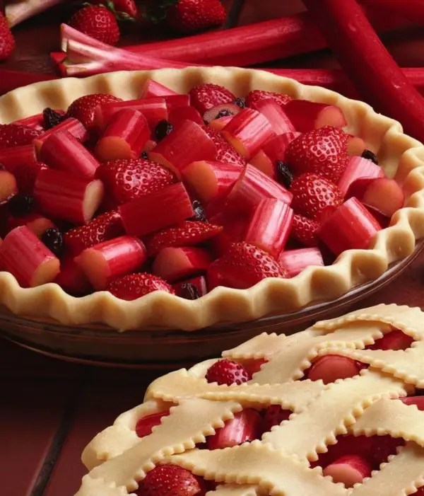 strawberry_rhubarb_pie