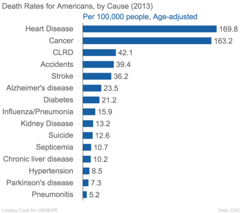 Death rates in America by cause