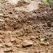 Peat Mud Skin Care