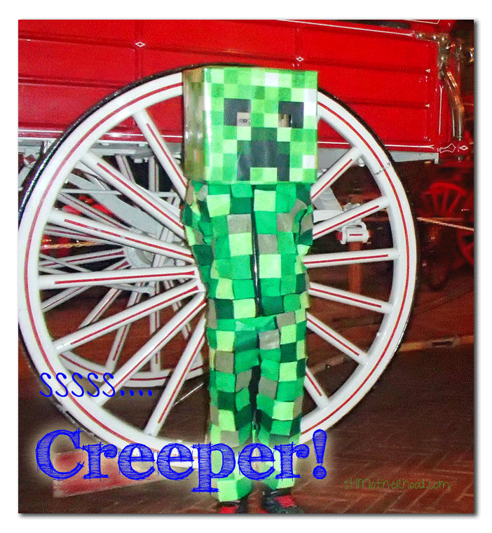DIY Minecraft Creeper Costume With Printable