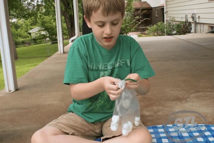 Garden Glove STEM