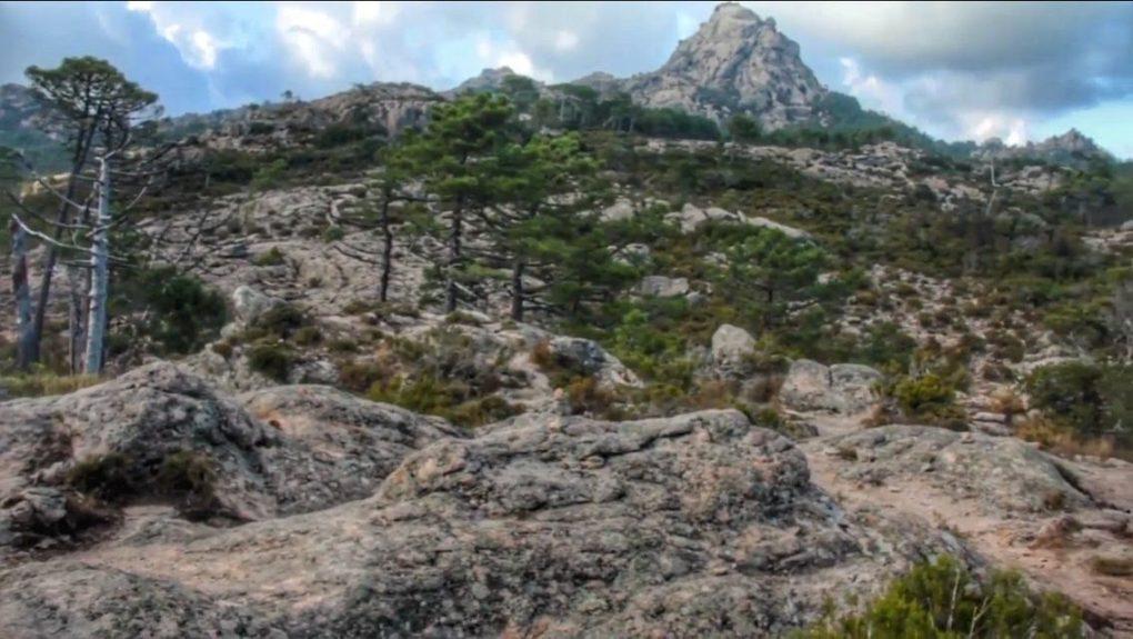 Cascade Piscia di u Ghjàddicu (en corse).