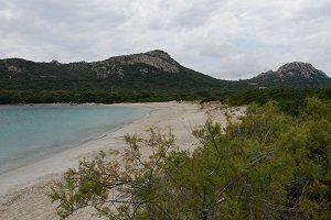 testarella-plages-bonifacio
