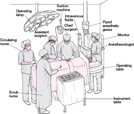 WHO to Expect In the Operating Room