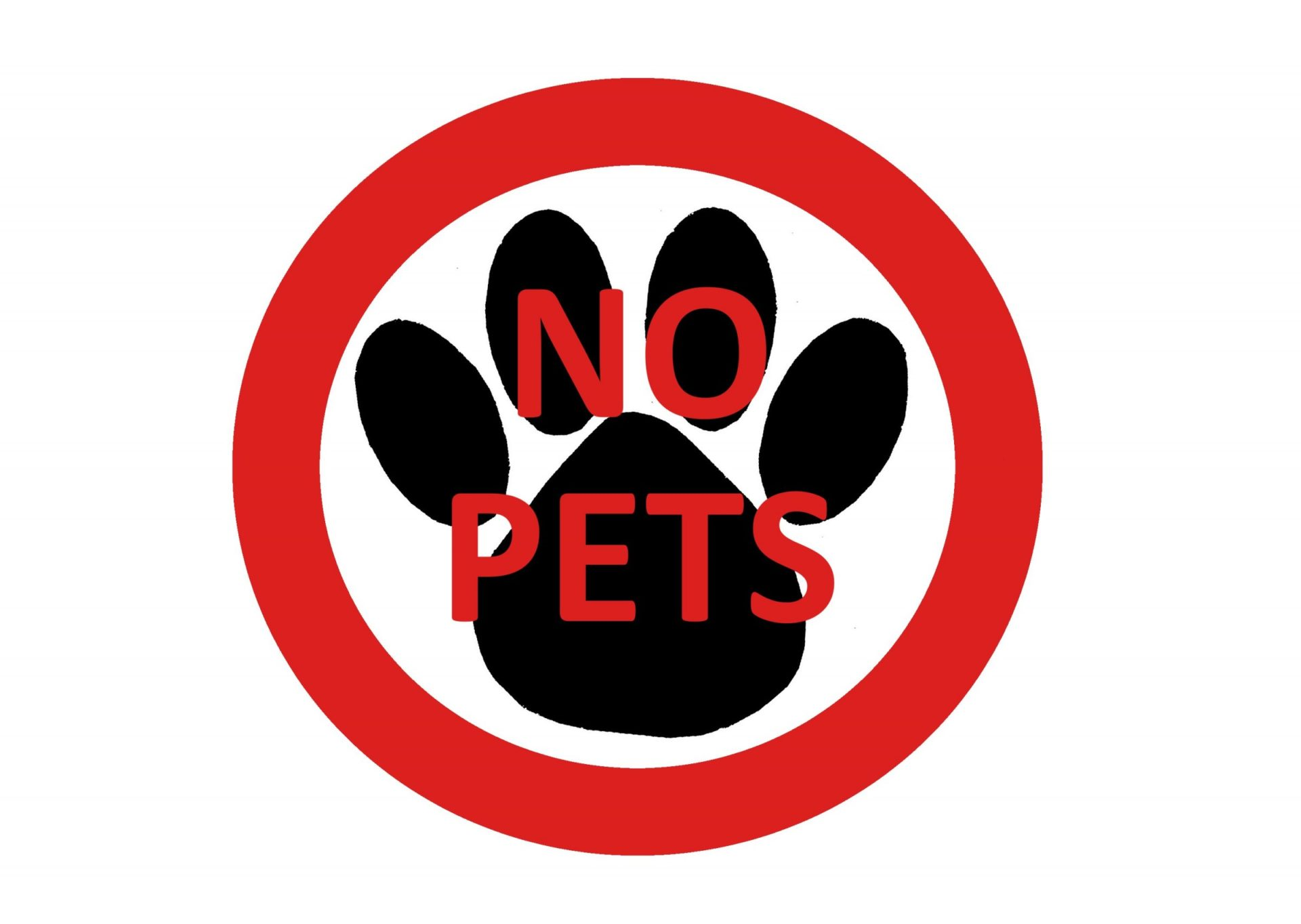 To Allow Or Not Allow Pets In Your Apartments