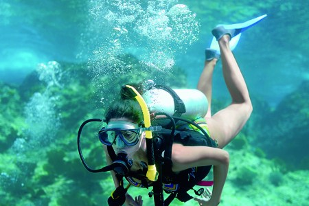 scuba diving certification bay area » Free Professional Resume ...