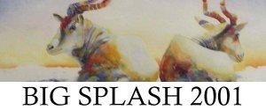 Big Splash 2001