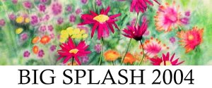 Big Splash 2004