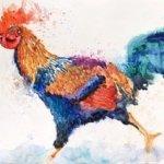 Rooster-by-Mirka-Fetté