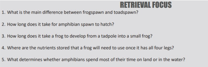 frog questions