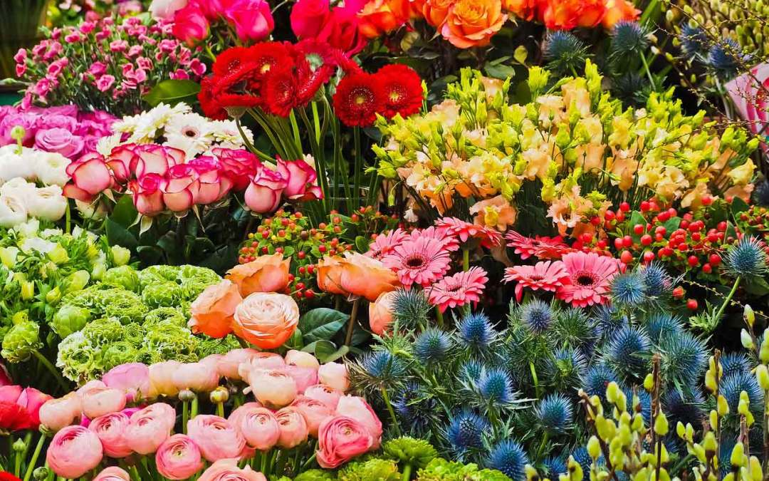 Mother's Day Flower Sale 2020