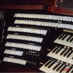 organ5.jpg