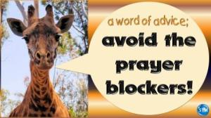 Picture of a giraffe for the prayer blockers bible study