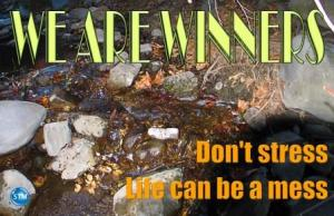 Picture of rocks in the creek for the spiritual nutrition page