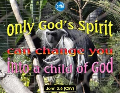 Born Again by the Holy Spirit of God; It is Your Spiritual Birth