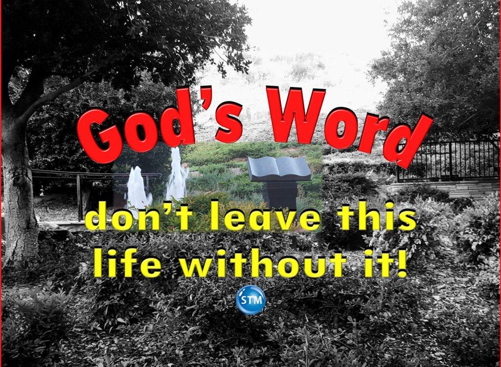 Understanding God's Word – It Is the Best Life Coach