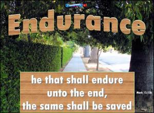 picture for endurance - redlands ca