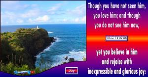picture for joy - Kilauea Lighthouse, Kauai