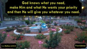Picture of rose garden for the providence bible study Matthew 6:32