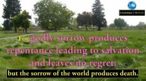 Picture of a green field with trees for the repentance bible study 2 Corinthians 7:10