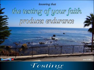 picture for testing - dana point, ca