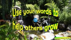 Picture of the Terrace Lagoon, San Diego Zoo for the your words bible study