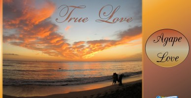 Agape Love; the Genuine Love of God is True Love