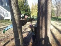 boys tree house
