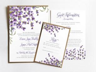 all-lavender