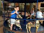Sam at a gallop!