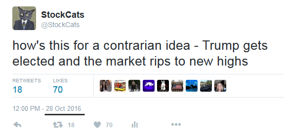 stockcats-contrarian-idea