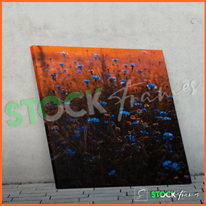 Canvas Prints Single Panels (Flowers) – 18×24, 40×40, etc.