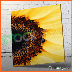 Canvas Prints Single Panels (Flower 4) – 18×24 etc.