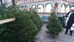 елочный базар в стокгольме
