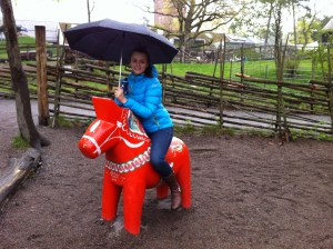 покататься на лошади в Скансен в Стокгольме
