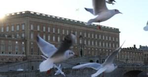 Экскурсия в Королевский дворец в Стокгольме