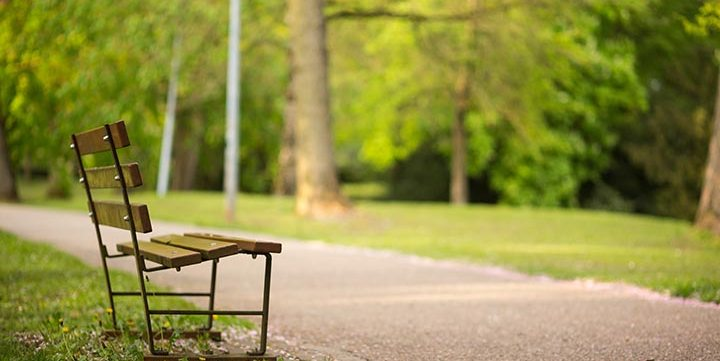 lone bench in park free stock image