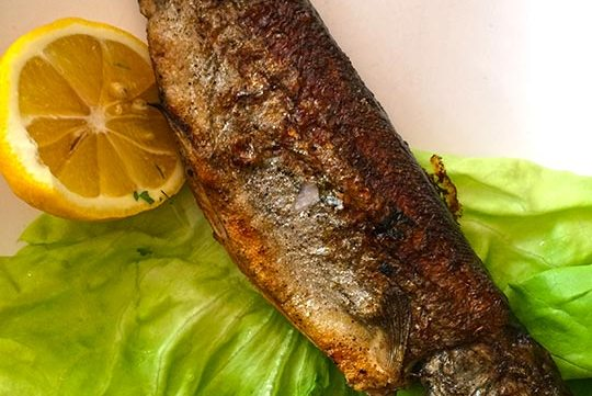 fried fish free stock image