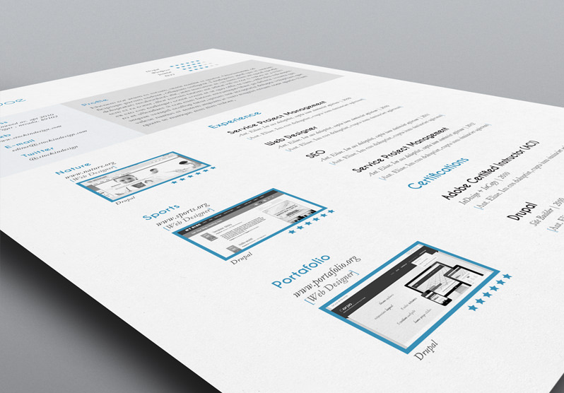 5 CV Resume InDesign Templates   StockInDesign InDesign Resume Template