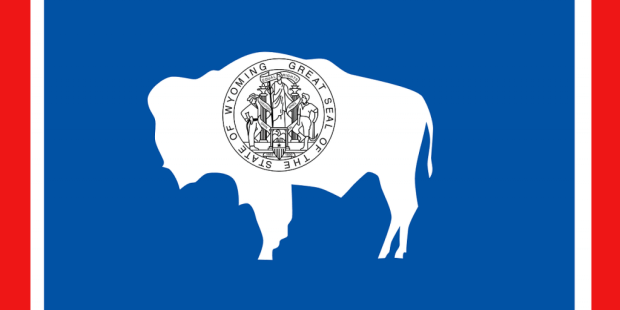 Wyoming becomes first US state to legally recognise DAO