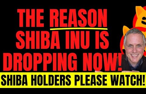 WHY SHIBA INU IS GOING DOWN RIGHT NOW! SHIBA INU HOLDERS YOU NEED TO SEE THIS NOW!