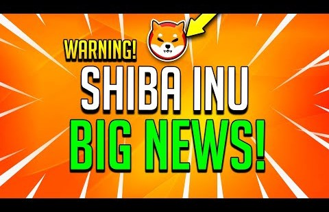 SHIBA INU MASSIVE NEWS CONFIRMED! LEAKED REPORT! – SHIB Shopping and selling