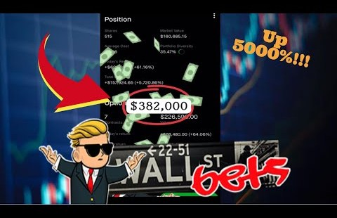 HE TURNED $3,260 INTO $382,000!! | Wallstreetbets | Robinhood alternatives shopping and selling