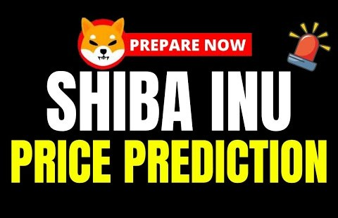 SHIBA INU PRICE PREDICTION!!! ONCE IN A LIFETIME OPPORTUNITY!! The Subsequent Shiba Inu Coin To 1000x!