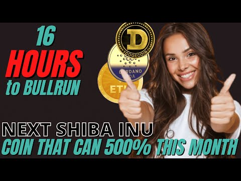 NEXT SHIBA INU COIN PREDICTIONS, Why Whales factual sold more BTC, Dogecoin imprint in DECEMBER !!