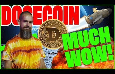 Dogecoin Spoil Out Coming!   Dogecoin Whale Stare & The Crypto Senate Strive in opposition to!