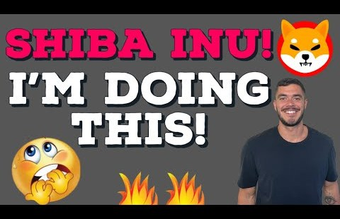 SHIBA INU PRICE CORRECTION: SHIBA INU HOLDERS MUST WATCH! THIS IS WHAT I'M DOING!
